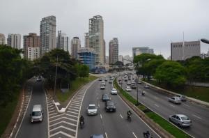 Pot do Ibirapuera parka (Avenida 23 de Maio)