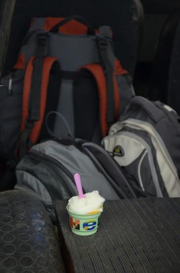 Sladoled in nahrbtniki